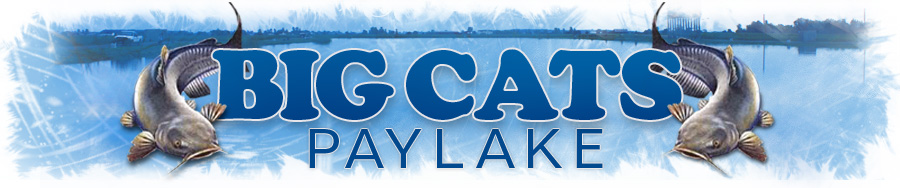 Big Cats Paylake